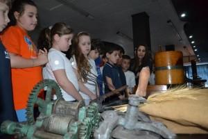 Visita ao Museu (111)