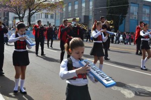 Desfile Cívico (95)