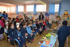 Cultivo de Suculentas (6)